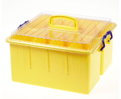 Sortierbox  mit Deckel und Griff-2