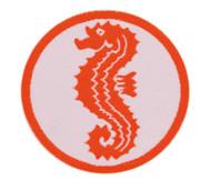 Schwimmabzeichen Seepferdchen