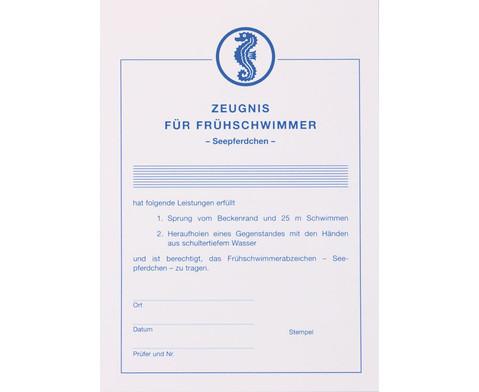 Zeugnis fuer Fruehschwimmer-1