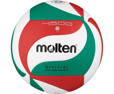 Wettspiel-Volleyball mit DVV2 Pruefzeichen