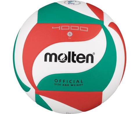 Trainings-Volleyball DVV geprueft