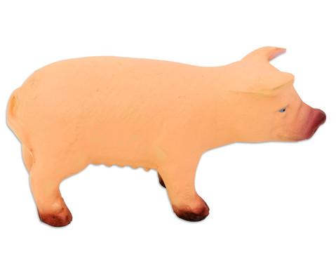Betzold Schwein Naturkautschuk