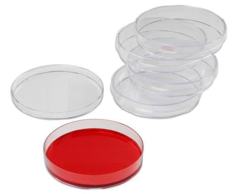 5 Petrischalen aus Kunststoff