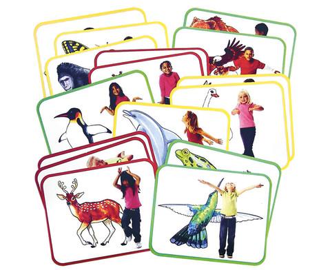 16 Yoga-Karten Tiere-1