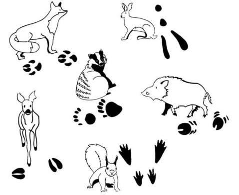 Tierspurenstempel 12-tlg