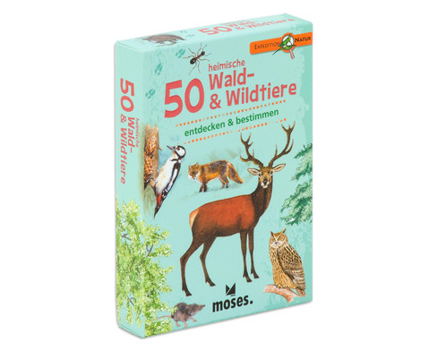 Expedition Natur 50 heimische Wald-  Wildtiere