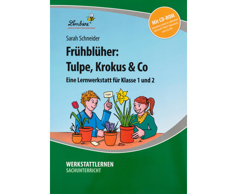 Lernwerkstatt Fruehblueher Tulpen Krokus  Co