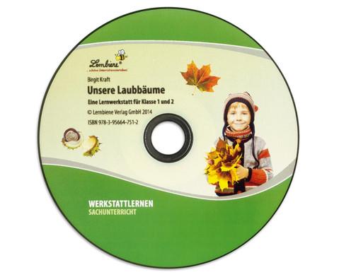 Lernwerkstatt Unsere Laubbaeume-2