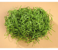 Grünes Dekogras