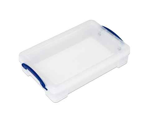 Really Useful Aufbewahrungsbox 4 l-2