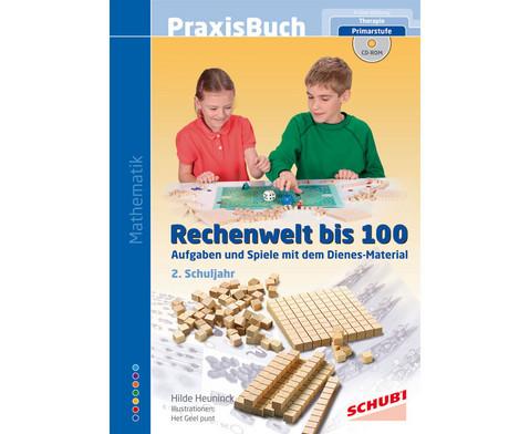 Praxisbuch Rechenwelt bis 100 inkl CD-ROM-1