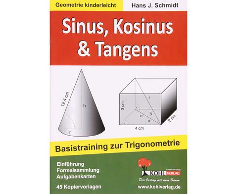 Sinus Kosinus Tangens - Basistraining  zur Trigonometrie-1