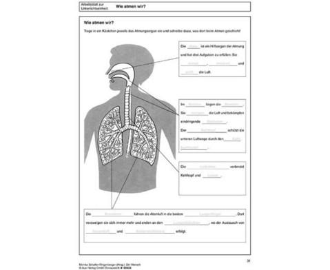 Kopiervorlagen Der Mensch  - 5 bis 10 Klasse-5