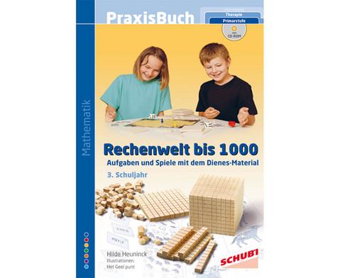 Praxisbuch Rechenwelt bis 1000 inkl CD-ROM-1