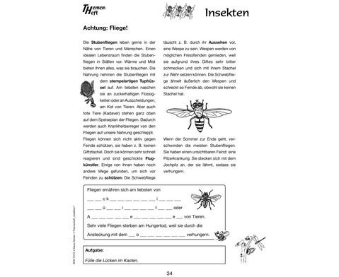 Themenheft Insekten - 3-5 Klasse-4