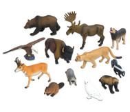 Nordamerikanische Tiere, 12-tlg. Set