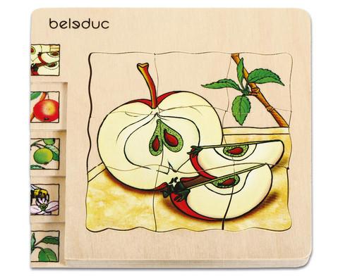 Lagen-Puzzel Apfel