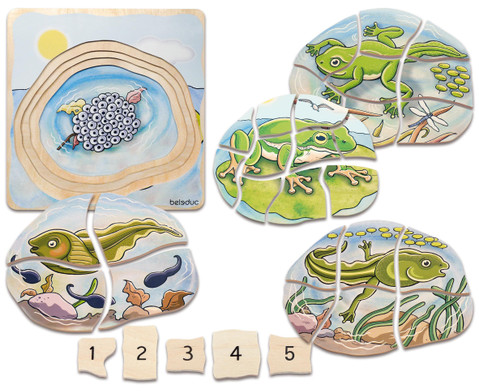 Lagenpuzzle Frosch
