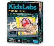 KidzLabs - Menschlicher Körper