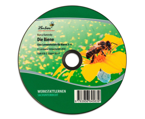 Lernwerkstatt die Biene-7