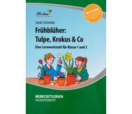 Lernwerkstatt: Frühblüher: Tulpen, Krokus & Co