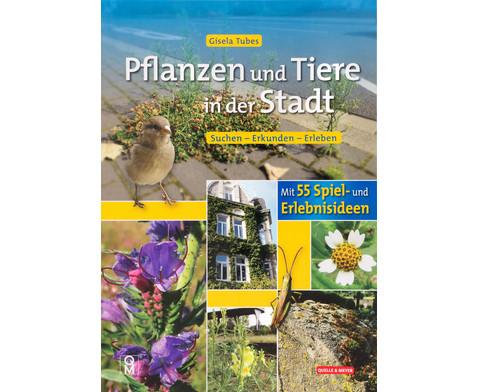 Buch Pflanzen und Tiere in der Stadt