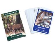 Naturquartett - Tiere des Waldes