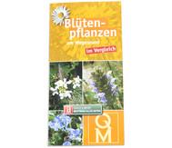 Bestimmungskarten - Blütenpflanzen am Wegesrand, 10 Stück