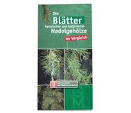 Bestimmungskarten - Blätter heimischer Nadelgehölze, 10 Stück