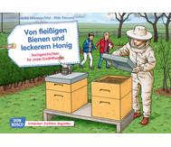 Bildkarten: Von fleißigen Bienen und leckerem Honig