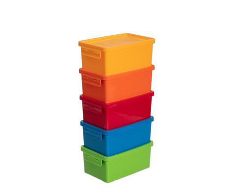 Betzold Aufbewahrungsbox 38 l 5 Stueck Farbset Bright n Fresh